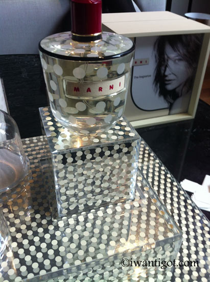 MARNI Fragrance Preview